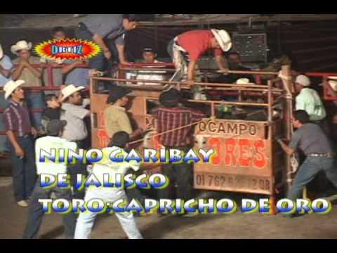 20 Destructores vs Jefes de Jefes, Colimas, Aves de H y Morelos