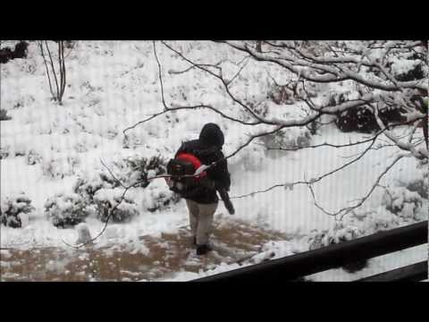 Snow Removal with Leaf Blower, Washington DC Snowstorm - March 25, 2013