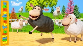 Baa Baa Black Sheep | Kindergarten Nursery Rhymes by Little Treehouse