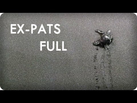 Baby Turtles in Dominica From Grandbabies in Minneapolis | EX-PATS Ep. 10 Full | Reserve Channel
