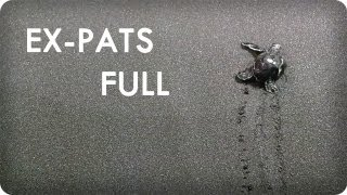 Baby Turtles in Dominica From Grandbabies in Minneapolis | EX-PATS™ Ep. 10 Full | Reserve Channel