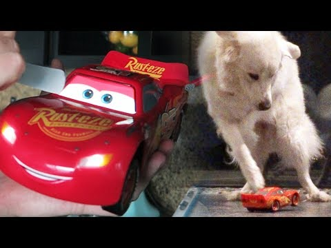 DOGS VS LIGHTNING MCQUEEN REMOTE CONTROL (KODA PEES) - SCS #115