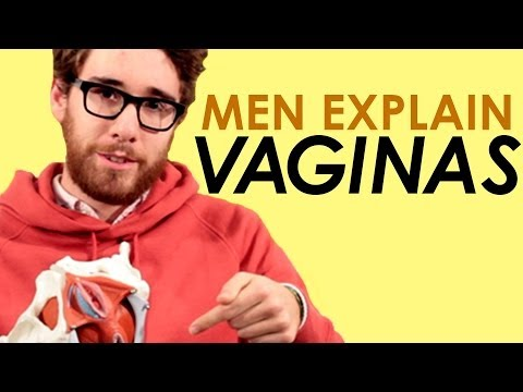 Men Explain The Vagina video