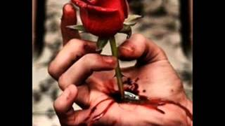my broken heart says : tere pyar me jal raha hu..  (heart touching)