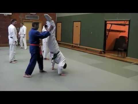 Gymnastic Partner Drills for Martial Artists Image 1