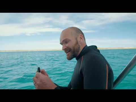 Manta Ray Rescue