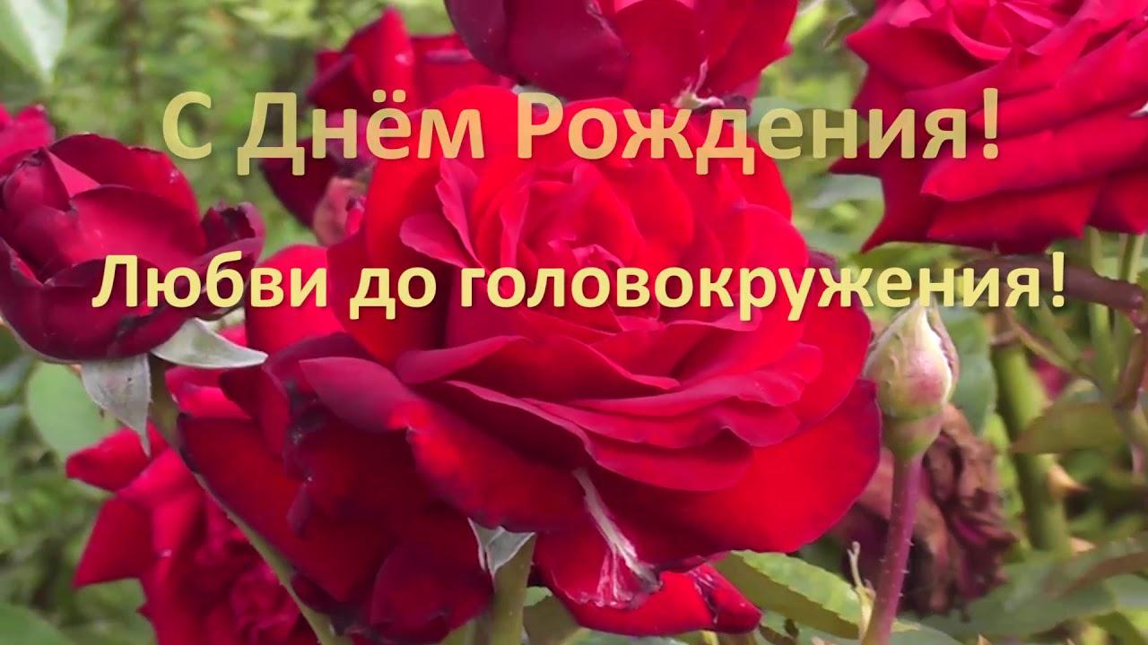 Кто поет с днем любви до головокружения