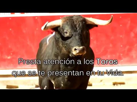 METAFORA DE MOTIVACIÓN | Presta Atención a los Toros