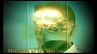 MIRACLES OF THE QUR'AN THE REGION THAT CONTROLS OUR MOVEMENTS www harunyahya com