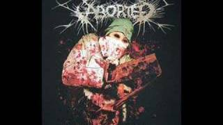 Watch Aborted The Saw  The Carnage Done video