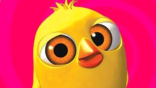 El Pollito Pio - The little chick cheep (Version en ingles)