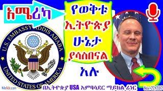በኢትዮጵያ የአሜሪካ አምባሳደር የወቅቱ ኢትዮጵያ ሁኔታ ያሳስበናል አሉ - USA America Position on Ethiopia - VOA