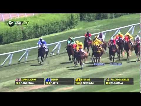 Vidéo de la course PMU PREMIO VIDA REAL H.