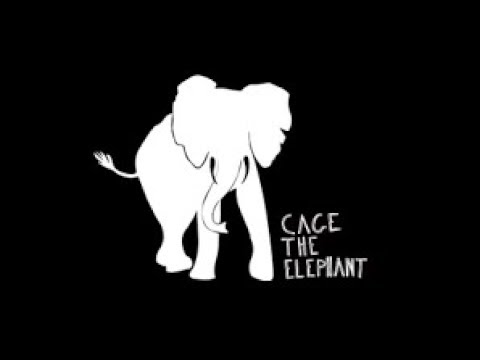 Ain't No Rest For The Wicked By Cage The Elephant |lyrics| video