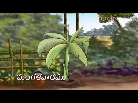 Telugu Learning's | Balasiksha | Vaaramulu | By Tooniarks video