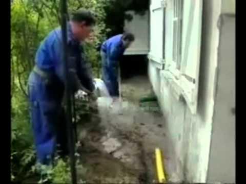 Eliminación colonias de termitas - cebos Sentri*Tech - www.tratamientodetermitas.com