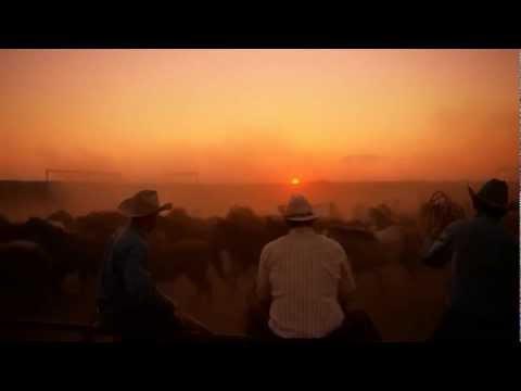 Emmylou Harris - Ballad of a Runaway Horse