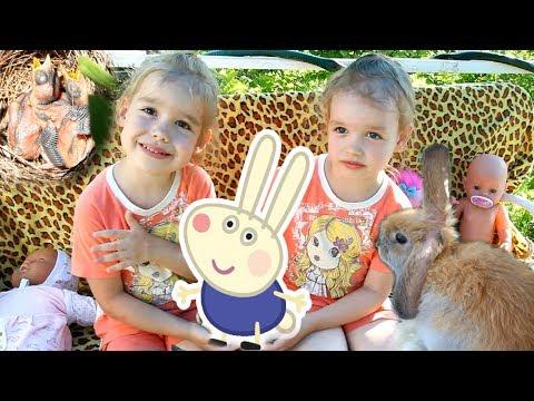 НОВОЕ ДОМАШНЕЕ ЖИВОТНОЕ декоративный пухлый КРОЛИК Ричард Уход за кроликом richard rabbit