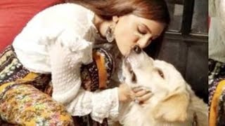 Indian actress replaced after dog attacks her face