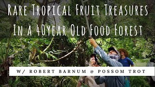 40 Year Old Food Forest: Gummy Bear Fruit, Bilimbi, Mountain Soursop + (Part 1 of 2)