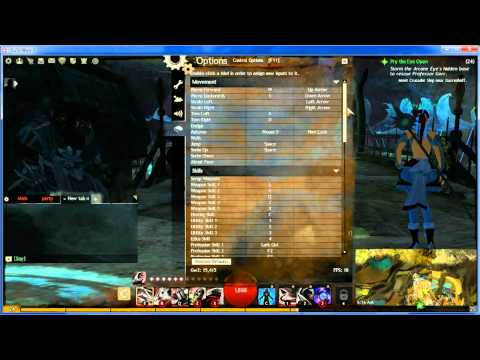 How to play Guild Wars 2- Tips and Helpful Info for New Players-Walkthrough 1-10