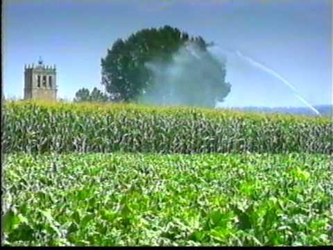 Mejora de la uniformidad en el riego por for Aspersores para riego de jardin