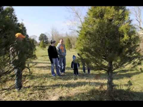 The Gann family searches for the perfect Christmas tree at House Mtn. Tree Farm