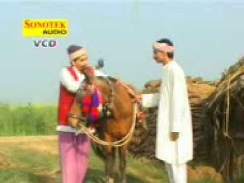 Mewat Sekh Chilli Irfan Palwal video