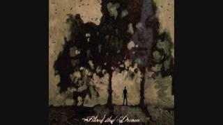 Watch Bleed The Dream Black Skys video