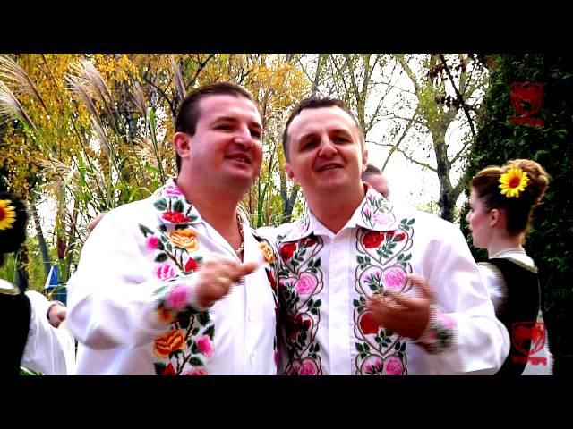 Fratii Crisan - Fericit e tata