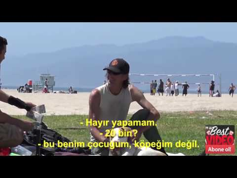 Evsiz Adamdan İnsanlık Dersi 50 Bin Dolara Köpeğini Satar Mısın Türkçe Altyazılı