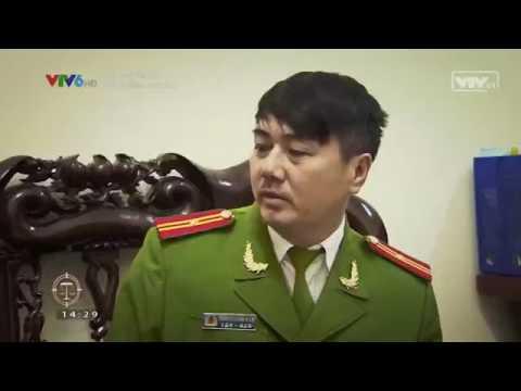 Tòa xử án - Gửi trứng cho ác - luật sư giỏi - luật sư giỏi tại Hà Nội