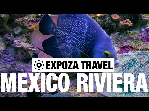 Mexico Riviera (Mexico) Vacation Travel Wild Video Guide