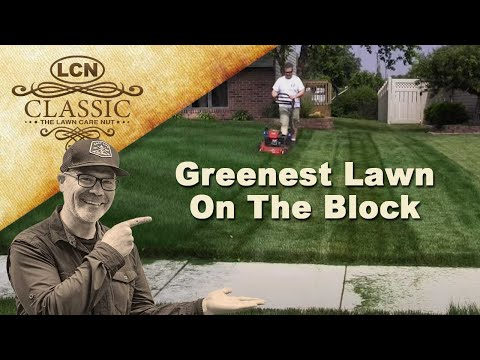 Secret To Having The Greenest Lawn On The Block