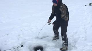 RDO - Bull Trout, Deep Mountain Lake Ice Fishing