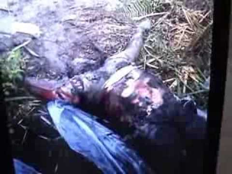 Bodies Of Ssb Jawans, Brutally Killed By Bodo Militants, Recovered In Chirang, Assam video