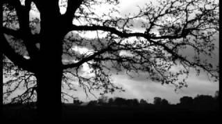 Watch Sun Kil Moon Unlit Hallway video