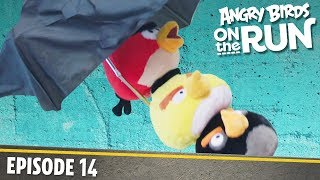 Angry Birds on The Run | Crying Sky - S1 Ep14