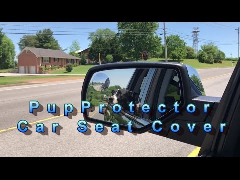 PupProtector Car Seat Cover Review