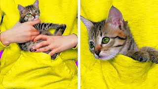28 AMAZING HACKS FOR PET OWNERS || 5-Minute DIYs For Your Pet!