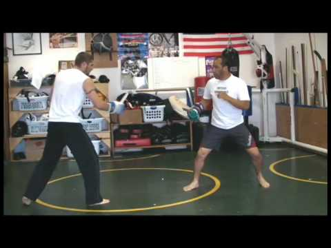 CKS Progressive Fighting Systems (self-preservation basic training DVD part one) Image 1