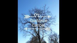 Guidance Cancer Mars-Avril 2019