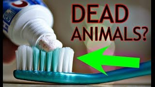 Everyday Things You Had No Idea Were Made Of DEAD Animals