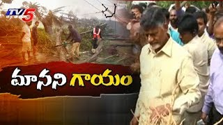 AP CM Chandrababu Naidu To Visit Cyclone Affected Areas Today | Srikakulam District | TV5News