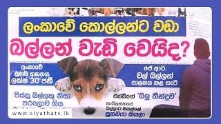 GOOD MORNING SRI LANKA | 05 - 01 - 2020