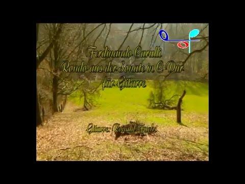 Ernst Gottlieb Baron - Sonata In Dm 9 Polonoise