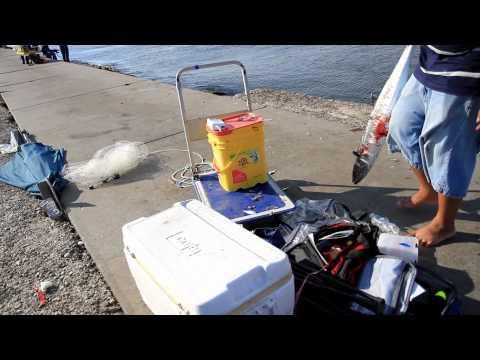 Tommy Fishing Show KingFish at Freeport 2015 Full HD Part 2