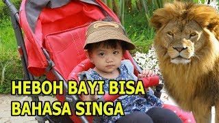 Anak Bayi Nikayla Zeasya Bermain Playground Raksasa di Jendela Alam part 1