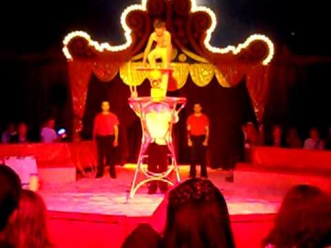 Robert, Circus Barones...