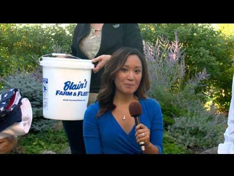Mary Jo Ola, Adam Schrager respond to ice bucket challenge